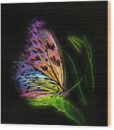 Butterfly Fantasy 2a Wood Print