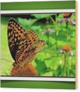 Butterfly For Earth Day Wood Print