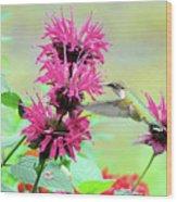 Butterfly Garden 25 Wood Print