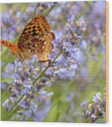 Butterfly Heaven Wood Print