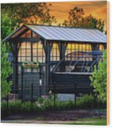 Butterfly House At Sunset Wood Print