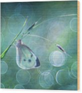 Butterfly Imagination Wood Print