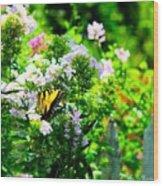 Butterfly In A Garden Wood Print