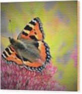 Butterfly In Bloom Wood Print