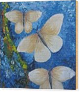 Butterfly In Blue 4 Wood Print