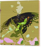 Butterfly In Color Wood Print