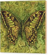 Butterfly In Greens-amber Collection  Wood Print