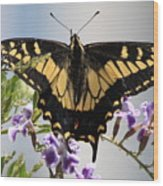 Butterfly In My Garden Wood Print