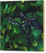 Butterfly In The Bush Wood Print
