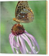 Butterfly In The Wind Wood Print