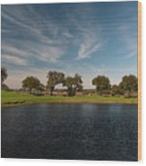 Butterfly Lake At Middleton Place Wood Print
