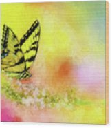 Butterfly Love Wood Print