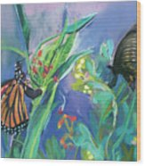 Butterfly Mammas Wood Print
