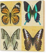 Four Butterfly Montage Wood Print