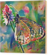 Butterfly Of Paradise 1 Wood Print