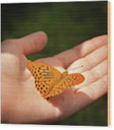 Butterfly On A Childs Hand Wood Print