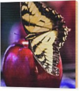 Butterfly On Apple Wood Print