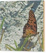 Butterfly On Beach Wood Print