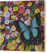 Butterfly On Buttons Wood Print