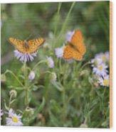 Butterfly On Fleabane #2 Wood Print