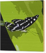 Butterfly On Green Wood Print