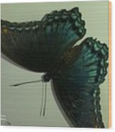 Butterfly On My Car Wood Print