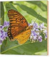 Butterfly On Purple Wood Print