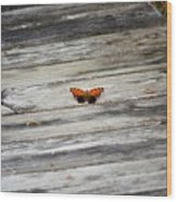Butterfly On The Dock Wood Print