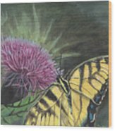 Butterfly On Thistle 2010 Wood Print