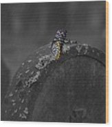 Butterfly On Tombstone Wood Print