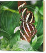 Butterfly Overlay Wood Print