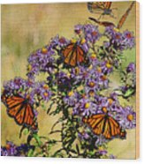 Butterfly Party Wood Print