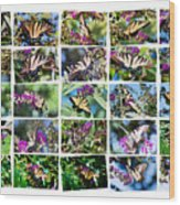 Butterfly Plethora I Wood Print