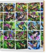 Butterfly Plethora II Wood Print