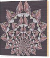 Butterfly Rock Wood Print