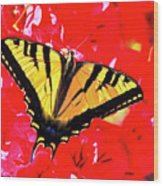 Butterfly Series #11 Wood Print