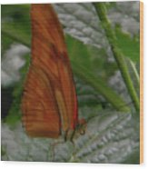 Butterfly Smile Wood Print