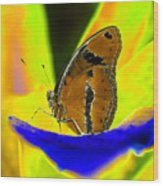 Butterfly Works Number 10 Wood Print