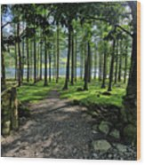 Buttermere Woods Wood Print