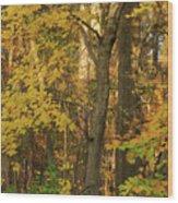Butterscotch Autumn Wood Print