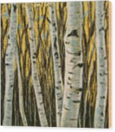 Buttery Birches Wood Print