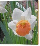 Button Daffodil Wood Print