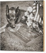 Buy A Print. Show Your Support For Reading K9 Police.  Willow Street Pictures.  Wood Print
