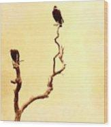 Buzzard Art Wood Print