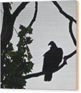 Buzzard Silhoutte Wood Print