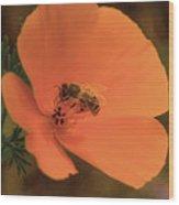 Buzzing Bee 1 Wood Print