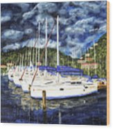 Bvi Sailboats Painting Wood Print