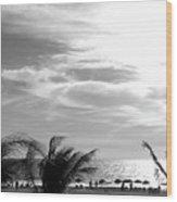 Bw Beach Wood Print