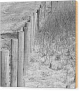 Bw Fence Line Wood Print