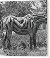 Bw Of Odyssey The Horse Sculpture Made Of Driftwood By Heather Jansch. Wood Print